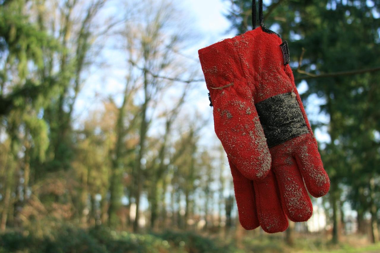 De rode handschoen